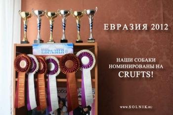 Международная выставка «Евразия»